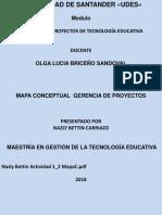 MAPA CONCEPTUAL GERENCIA DE PROYECTOS.pptx