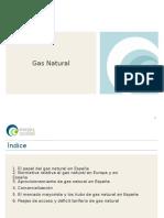 Energía y Sociedad_Gas Natural. Resumen Ejecutivo