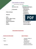 264296337-Enfermedades-infecciosas-en-Alpacas.pptx