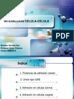 interaccioncelula-celula-101212152151-phpapp02.ppt