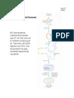 lecture18.pdf