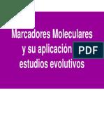 Teo Rica Marc Adores Molecular Es 2009