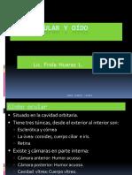 Histologia Del Ojo y Del Oido