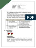 2. RPP Supervisi Praktikum H.mendel - Copy