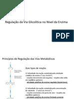 Aula 05 Regulação de Glicolise