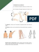 Movimientos Anatómicos
