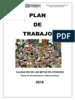 PLAN DE TRABAJO VERIFICACION DE METAS 2018.docx