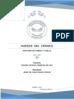 Javier.HUESOS  DEL  CRÁNEO.pdf