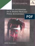 La Etapa Intermedia en El Proceso Penal - Gonzalo Del Río Labarthe