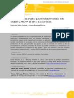 Como aplicar las pruebas parame - REIRE.pdf