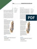 lectura org. politica de los incas y azt..docx