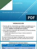 TamañoMuestra_Aula.pdf