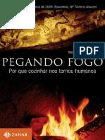 WRAGHAM, S. Pegando fogo.pdf