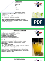 2. Recetario Bartender Nivel Basico.