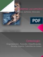 SISTEMA LOCOMOTOR.pdf