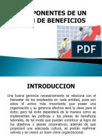 Componentes de Un Plan de Beneficios Actividad 15