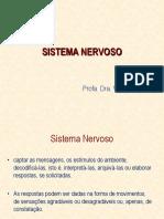 Aula 3 Fisiologia Sistema Nervoso-1