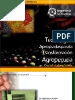 Manual Tecnologia Para La Transformacion Agropecuaria Deshidratador Solar ESF 1