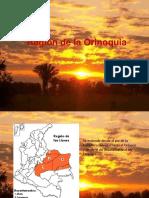 Region de La Orinoquia Etnobotanica