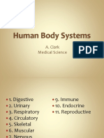 Human Body Systems PPT.pptx