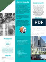 BM folleto.pdf
