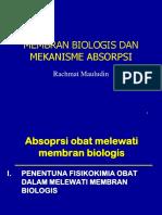 mekanisme absorbsi