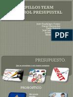 CEPILLOS TEAM Control Prsupustal(1)
