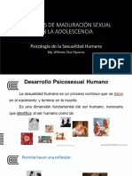 3. Sx Humana 2