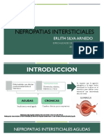 NEFROPATIAS INTERSTICIALES