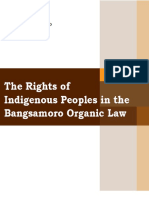 The Rights of the Indigenous Peoples in the BOL
