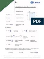 Estudio de Sección a Flexo-Compresión.pdf