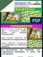 Sesion 8 Cta Cuarto Fotosintesis