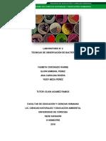 INFORME 3 DE HONGOS Y LEVADURA.pdf