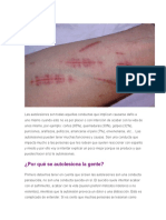 AUTOLESIONES (Cutting)