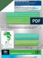 Tratados de manejos de desechos peligrosos Panamá