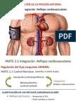 Reflejos cardiovasculares