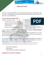 1.3 Estado de Coma. PDF.