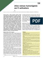 Neuroprotective versus tumorigenic protein kinase C activators