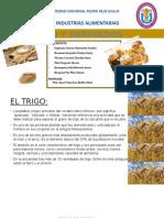 TRIGO Y DERIVADOS.pptx