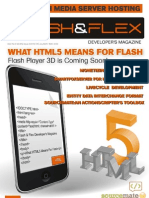 What HTML5 Means for Flash FFD 06 2010