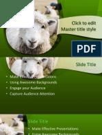 160494-lamb-template-16x9.pptx