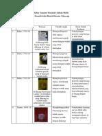 Daftar Temuan Masalah Limbah Medis