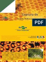 Captura de Enxames de Abelhas Melíferas Por Caixas-Isca
