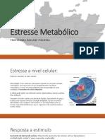 Estresse Metabolico Dieto 2