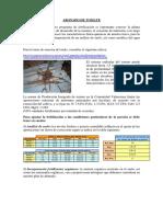 boletin-huerto-13-1496041902.pdf