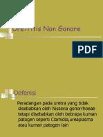 Uretritis Non Gonore.ppt