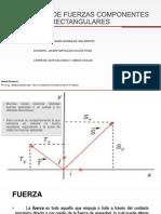 Informe Fisica Componentes Coplanares Rectangulares