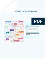 Tema 16. Introduccion Metabolismo_desarrollado