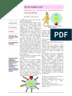 BoletinHoma26.pdf