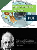 Teoria Celular